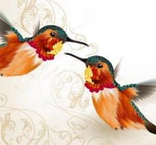 小鸟情人节图片