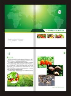 绿色环保菜篮子工程画册