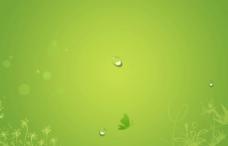 桌面 绿色桌面图片