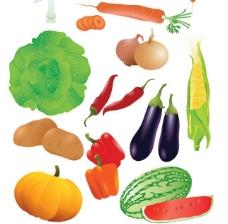 常见果蔬矢量素材下载