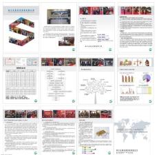 四川圣联投资管理画册模板下载