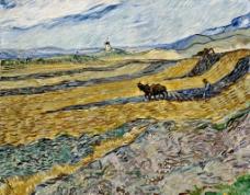 梵高 油画 农田图片