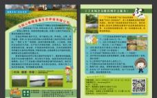 农场单页图片