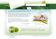 国外精美网站设计图片