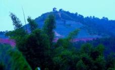 山水 麻竹图片