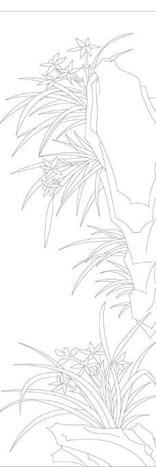 梅兰竹菊白描线条兰图片