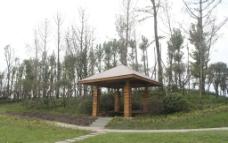 防腐木景观亭图片