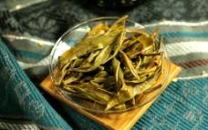益心泉普洱生茶 茶园图片