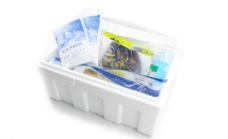 速冻海鲜包装图片