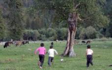 牧区的孩子图片