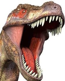 食肉恐龙图片