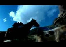 牧民放牧背景视频图片