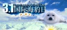 3 1国际海豹日图片