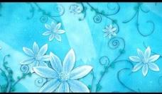 炫彩花纹视频素材图片