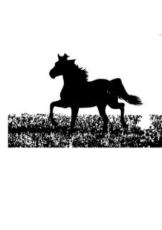 草地上的马图片