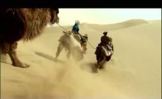 沙漠驼队视频素材