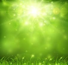 草地绿草图片
