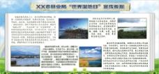 世界湿地日环保环境宣传版报图片