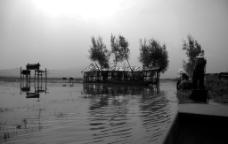 黑白 山水 景观图片