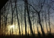 朝霞 晨光 太阳图片