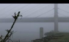 冬日雨雾大桥背景视频