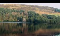 湖水森林风光视频素材