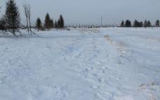 冬天 东北 雪景图片