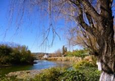 公园风景图片