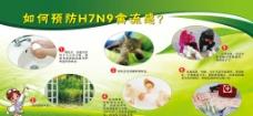 预防H7N9禽流感图片