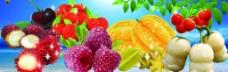 缤纷水果季图片