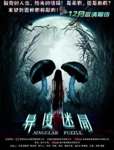 电影《异度迷局》海报图片