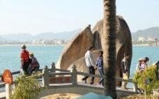 海边莲花桥图片