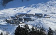 白哈巴村图片