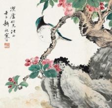 春羽图图片