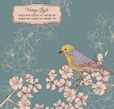 鲜花小鸟图片