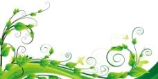 旋转绿叶图片