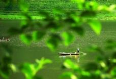 春江渔歌图片