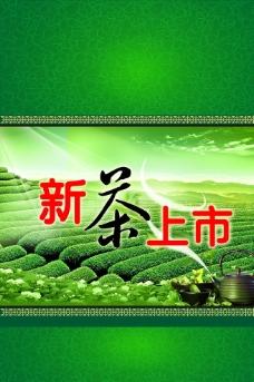 新茶上市 绿图片