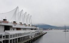 温哥华的雾图片