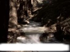 小溪视频素材
