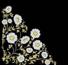 手繪花卉 花圖片