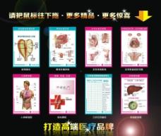医疗各种解剖图总汇图片