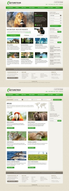 2版动物世界网页模板——psd分层素材