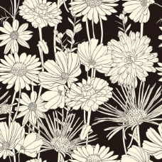 精美黑白线稿背景03—矢量素材