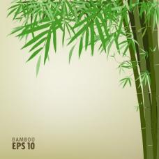 绿竹背景文本模板矢量素材-2