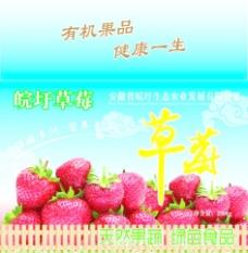 草莓包装盒图片