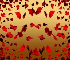 玫瑰花瓣素材图片