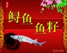 鲟鱼 鱼子图片
