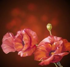 水墨花卉 手图片