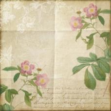 复古纸张花卉背景图片